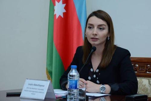 Hindistan və Gürcüstandan 30 Azərbaycan vətəndaşı ölkəyə gətirilib