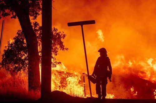 Ukraynada meşə yanğını – 4 ölü, 10 yaralı var