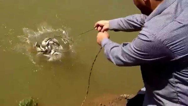 Qanunsuz balıq ovlayanlar 13 min cərimələndi