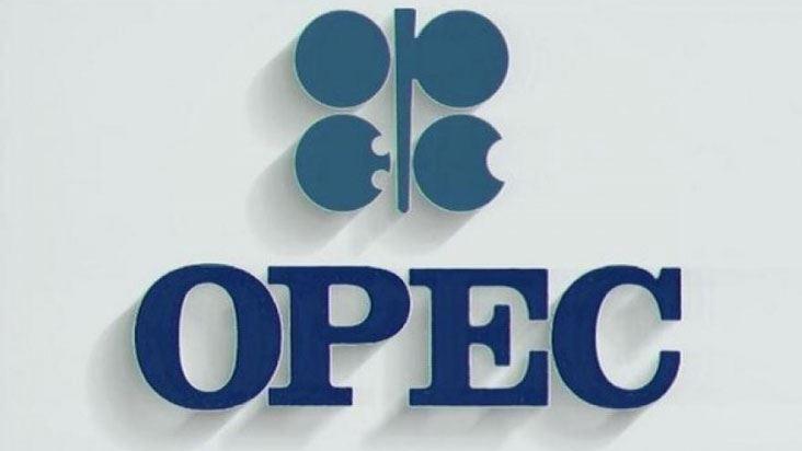 OPEC və qeyri-OPEC ölkələri nazirlərinin görüş tarixi açıqlandı