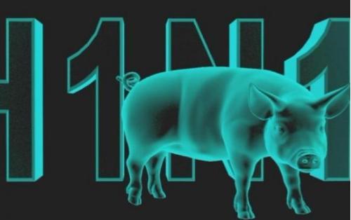 Всемирная организация здравоохранения и наш Минздрав снова о свином гриппе