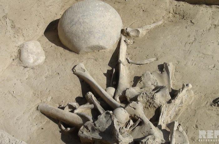 Şəkinin Fazıl kəndində antik dövrə aid abidələr aşkarlanıb - FOTO