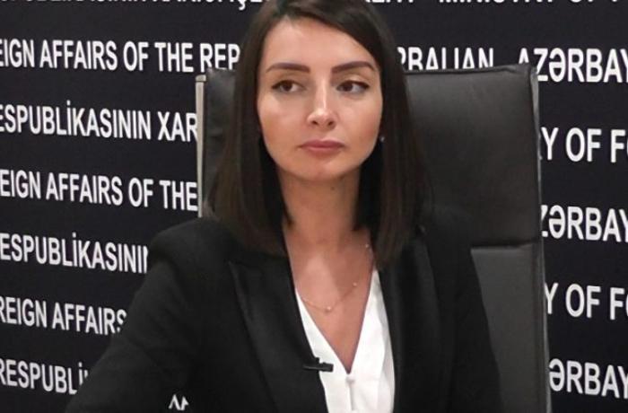 """Leyla Abdullayeva: """"Ermənistan rəhbərliyinin bu kimi addımları işğalın möhkəmləndirilməsinə xidmət edir"""""""