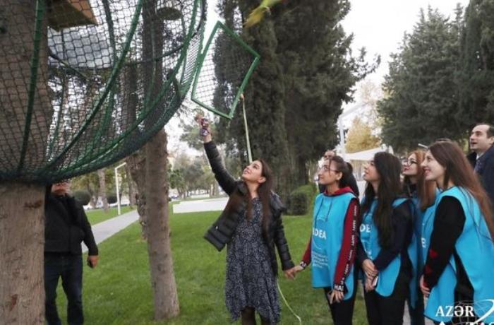Leyla Əliyevanın iştirakı ilə Bakıda parka 10 tutuquşu buraxıldı - FOTO