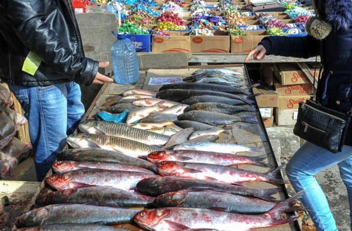 Ekspertdən küçədə satılan balıqlarla bağlı XƏBƏRDARLIQ