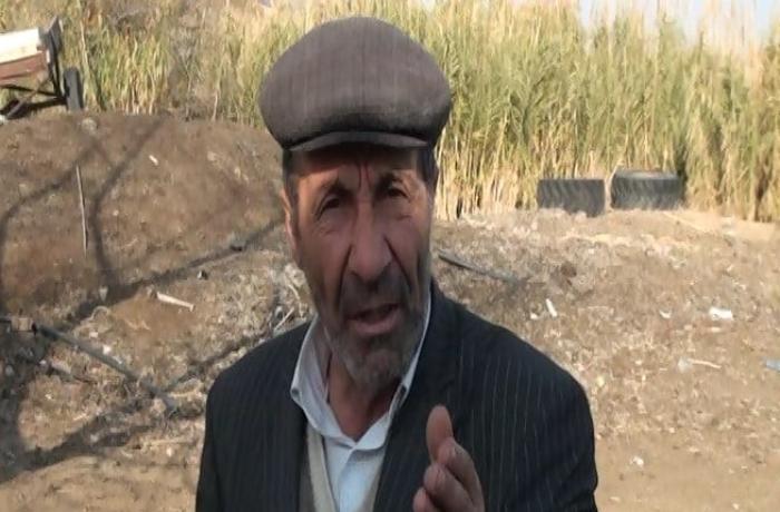 Goranboyda fermeri aldadıb 22 baş mal-qarasını apardılar