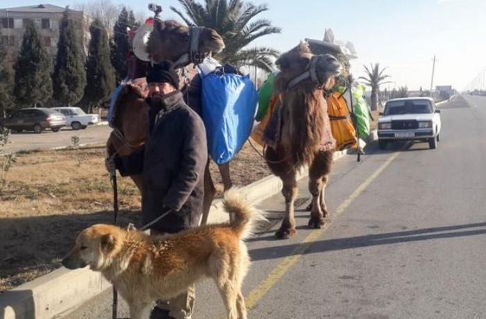 İrandan dəvə ilə səyahətə çıxan turist 9 ay sonra Gəncəyə çatıb - FOTOLAR