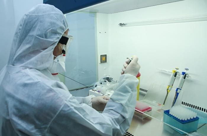 TƏBİB: Koronavirusa yoluxma əsasən bu yerdə baş verir