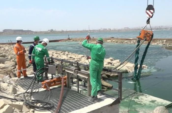 Böyükşor gölündə təmizlik işlərinə başlandı - VİDEO