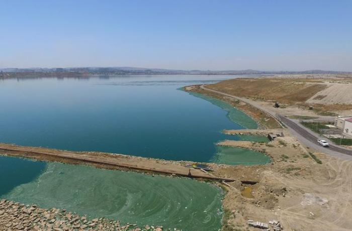 Böyük Şor gölündəki son vəziyyət AÇIQLANDI