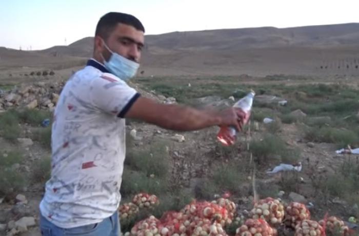 Abşeron RİH-dən satdığı soğanı yandıranla bağlı AÇIQLAMA - VİDEO