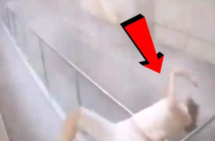 Beyrut partlayışının daha bir görüntüsü ortaya çıxdı – VİDEO