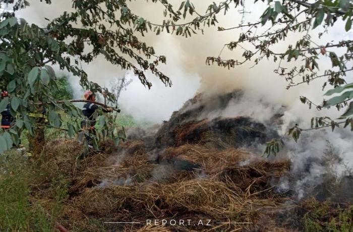 Qubanın polis postu qurulan kəndində daha bir yanğın başladı - FOTO