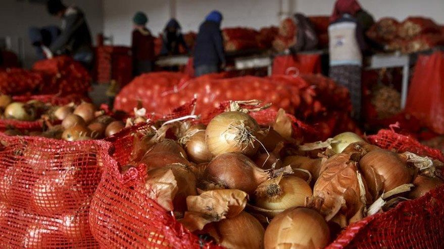 Türkiyede soğanın fiyatı 2.5 liraya yükseldi