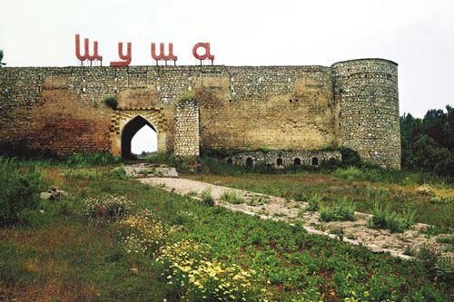 """""""Ermənistanın Şuşada meşələri yandırması bəşəri cinayətdir"""" - Nazirlik"""