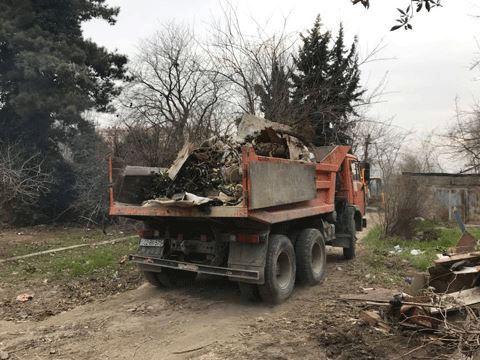 Ağacların kəsilib yerində obyekt tikilməsi ilə bağlı nazirlikdən AÇIQLAMA