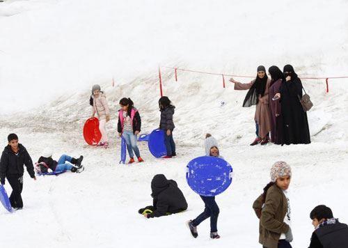 Yanvar ayında Azərbaycana gələn turistlərin sayı açıqlandı