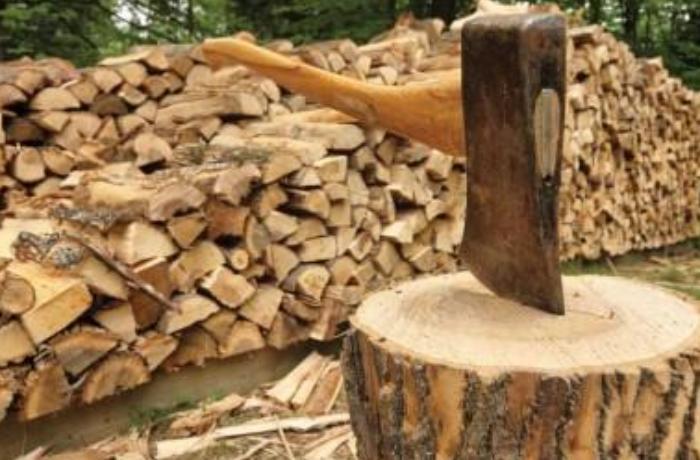 Qazlaşmanın 100 faiz olduğu bu rayonlarda məktəblər odunla qızdırılır? - MÜƏMMA