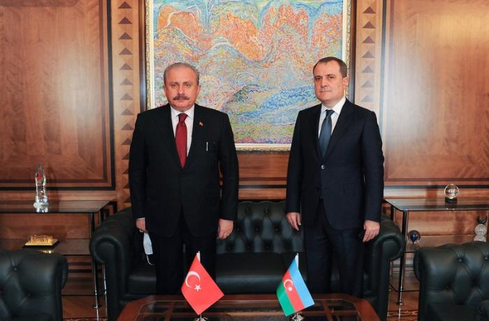 Ceyhun Bayramov Türkiyə parlamentinin sədri ilə görüşüb - FOTO