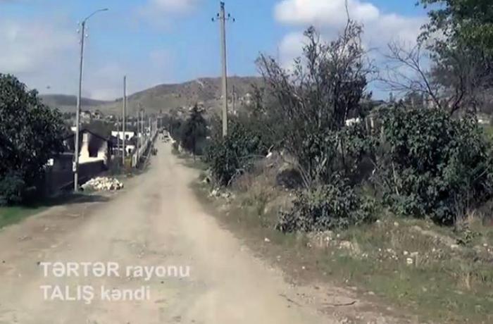 Tərtər rayonunun işğaldan azad olunan Talış kəndinin videogörüntüsü - VİDEO