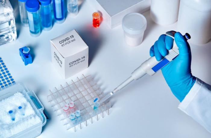 Millinin daha 2 güləşçisi koronavirusa yoluxdu