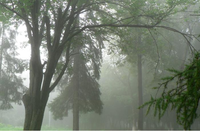 Leysan, dolu, külək - Sabahın havası