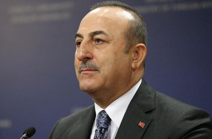 Türkiyə XİN Ermənistandakı hadisələrlə bağlı açıqlama yaydı