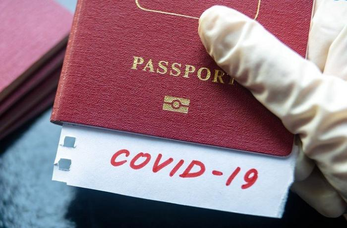 Health Ministry: Impossible to get COVID-19 passport by passing IgG analysis