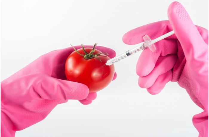 Geni dəyişdirilmiş qidalar nədir? - Həkim-fitoterapevtdən İZAH
