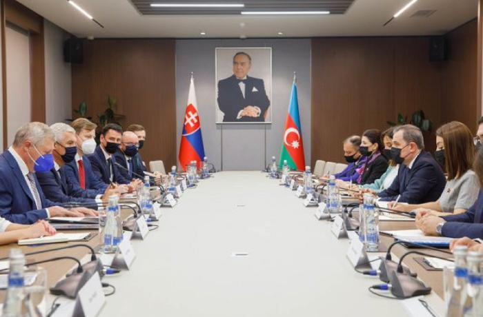 Ceyhun Bayramov Slovakiya XİN rəhbəri ilə görüşdü - FOTO