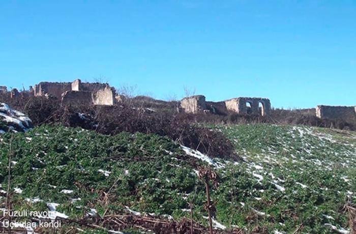 Füzuli rayonunun daha bir kəndindən VİDEO