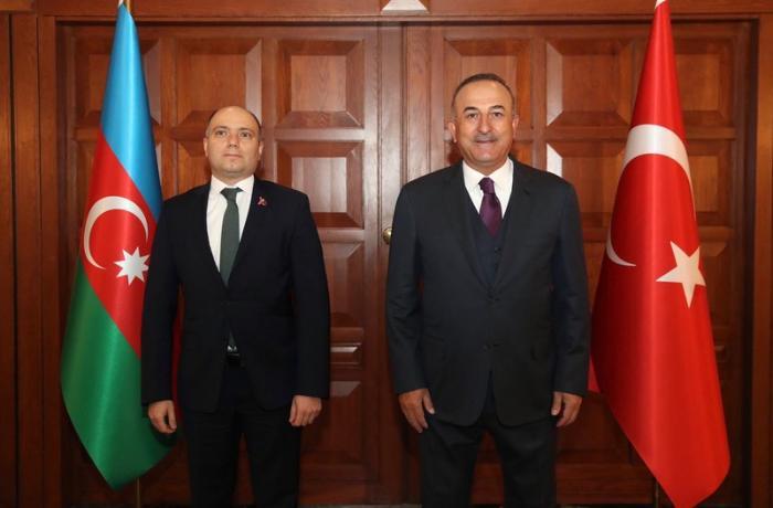 Mövlud Çavuşoğlu Anar Kərimov ilə görüşüb