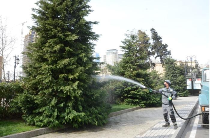 Bu gün Bakıda 550 küçə dezinfeksiya edilib - FOTO