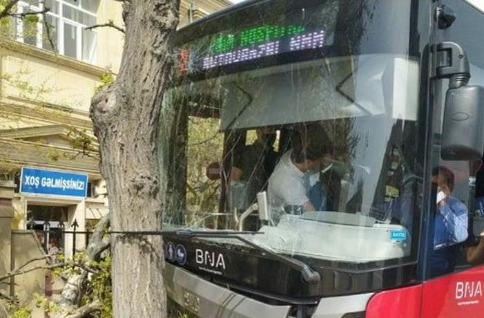 """""""BakuBus""""un avtobusu ağaca çırpıldı: Xəsarət alanlar var - VİDEO"""