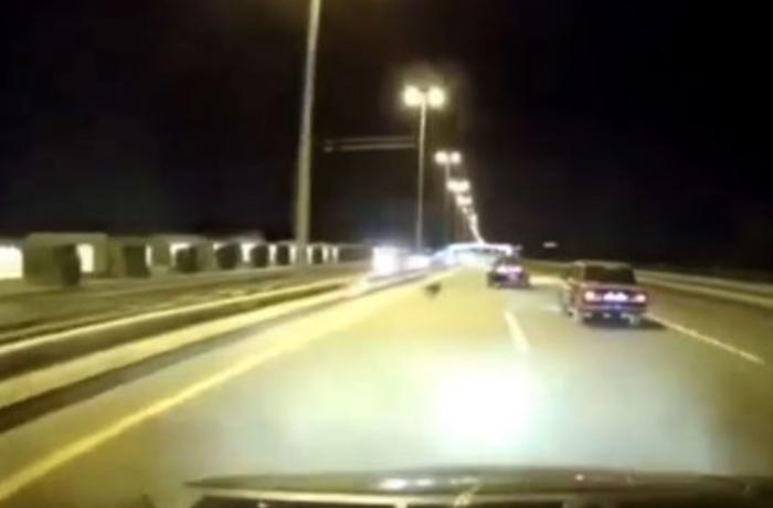 Bakıda qarşısına it çıxan avtomobil qəzaya uğradı - ANBAAN VİDEO