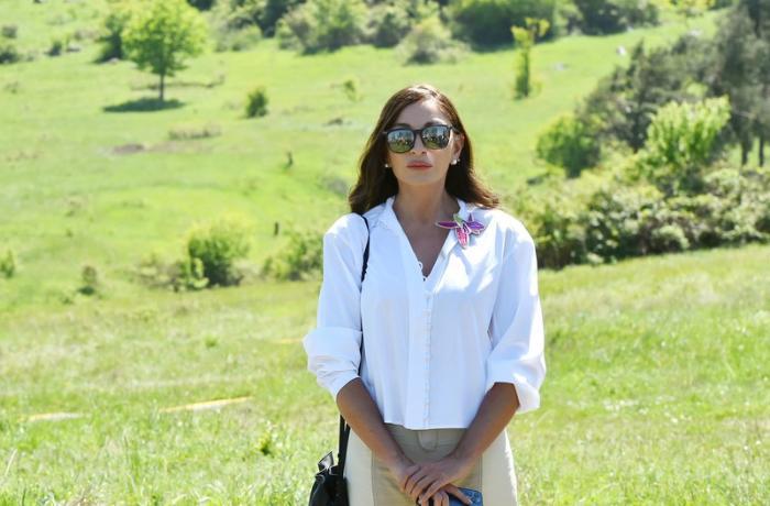 Mehriban Əliyeva Qarabağdan görüntü paylaşıb - FOTOLAR + VİDEO