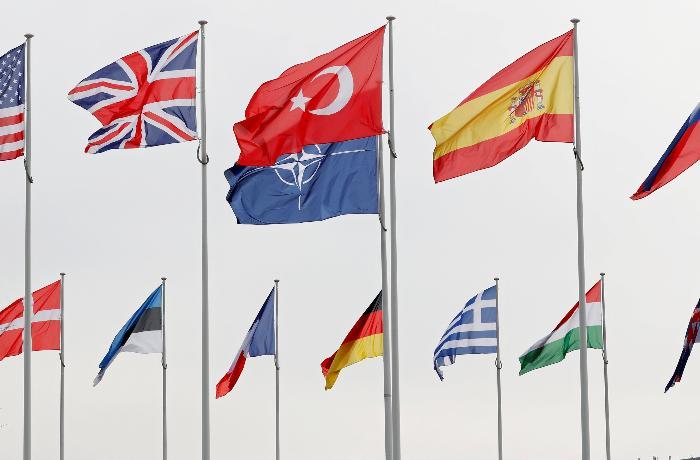 NATO sammitində bu mövzular müzakirə olunacaq