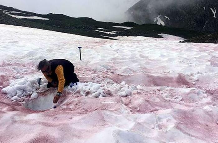 Alimlər Alp dağlarına qarın qırmızı rəngdə yağmasının səbəbini açıqladı