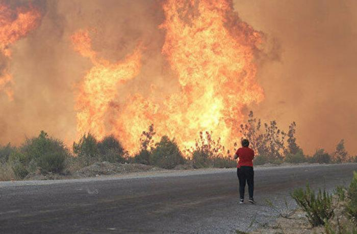 Antalyada meşəni yandıran yeniyetmə həbs edildi