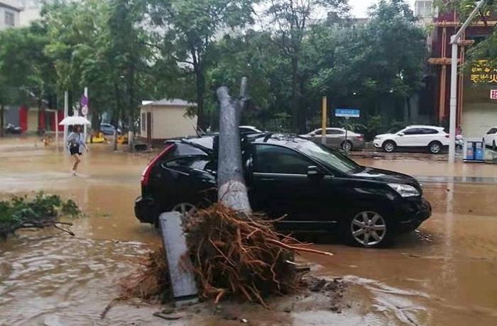 Çində sel nəticəsində ölənlərin sayı 300-ü keçdi