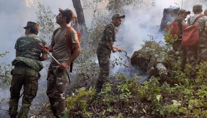 FHN: Yardımlıda 30 hektar meşə ərazisi yanıb - Yanğın davam edir + VİDEO