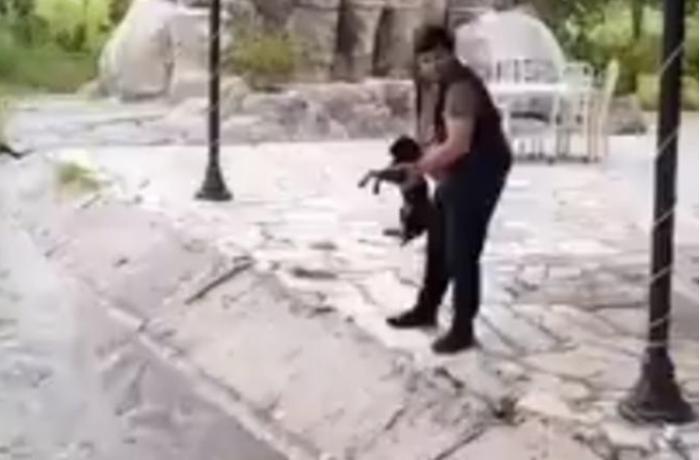İti su kanalına atan şəxs məsuliyyətə cəlb olundu